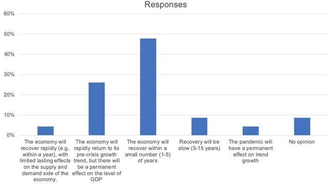 The risks to a rapid recovery: Views from top UK economists 1