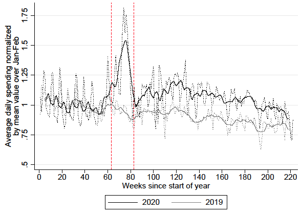 Spending dynamics and panic buying during the COVID-19 first wave 2