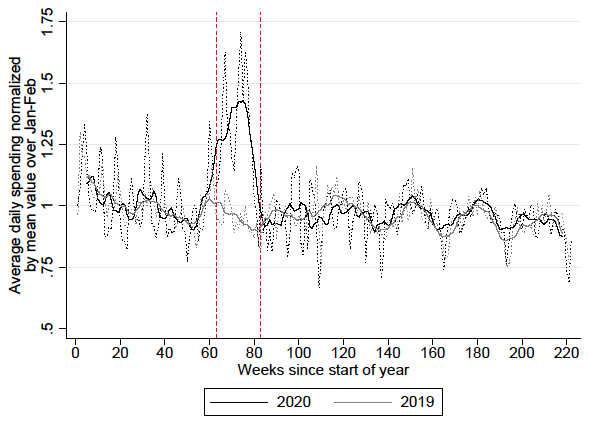 Spending dynamics and panic buying during the COVID-19 first wave 3