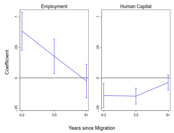 Ethnic networks and immigrants' employment and human capital